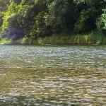 Vistas del Rio sella