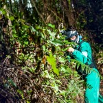 Paintball en RIbadesella, Asturias